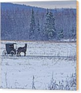 Amish Carriage Wood Print