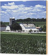 Amish Country - 38 Wood Print