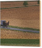 Amish Country Lancaster Pennsylvania Wood Print