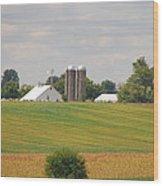 Amish Farm 2 Wood Print