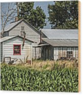 Amish Farm In Tennessee Wood Print