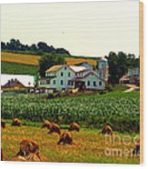 Amish Farm On Laundry Day Wood Print