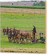 Amish Farmer Wood Print by Guy Whiteley