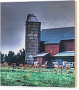 Amish Farming 2 Wood Print