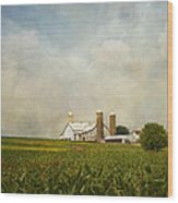 Amish Farmland Wood Print