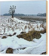 Amish Field In Winter Wood Print