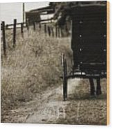 Amish Horse And Buggy Wood Print