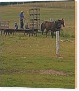 Amish Man And Two Sons On The Farm Wood Print