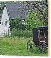 Amish Way Of Life Wood Print