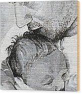 Amit And Mika Wood Print