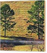 Among The Trees Wood Print