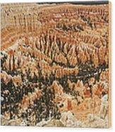 Amphitheatre At Bryce Canyon Wood Print