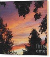 Ams 186a Wood Print