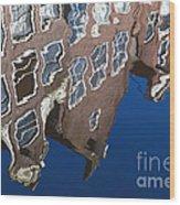 Amsterdam 05 Wood Print