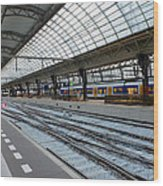 Amsterdam Central Station Wood Print