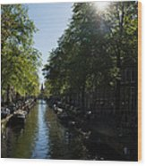 Amsterdam Spring - Green Sunny And Beautiful Wood Print