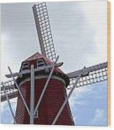 Amsterdam Windmill. Wood Print