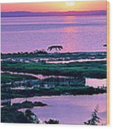 Amvrakikos Gulf Wood Print