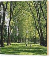 An Afternoon At Versailles  Wood Print