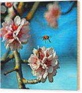 An Almond Pollen Day Wood Print