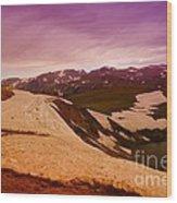 An Alpine Lake Near The Top Of Beartooth Pass  Wood Print