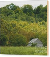 An American Country Scene Wood Print