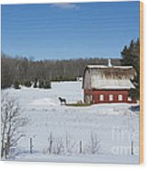 an American Frozen Pasture Wood Print