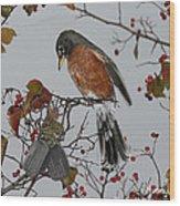 An American Robin Remembers Wood Print
