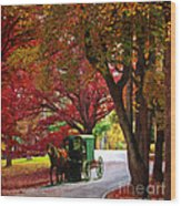 An Amish Autumn Ride Wood Print