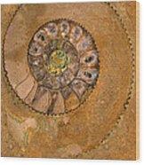 An Ancient Treasure I Wood Print