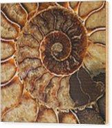 An Ancient Treasure II Wood Print