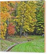 An Autumn Childhood Wood Print