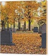 Forest Hill Autumn Light  Wood Print