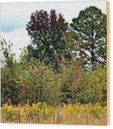 An Autumn Day In Alabama Wood Print