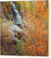 An Autumn Falls Wood Print