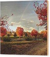 An Autumn Rainbow Wood Print
