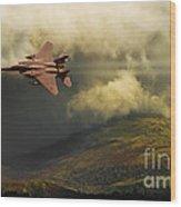 An Eagle Over Cumbria Wood Print by Meirion Matthias
