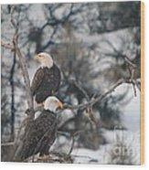 An Eagle Pair  Wood Print