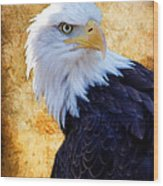 An Eagles Standpoint Wood Print