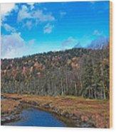 An Early Fall Day At Cary Lake Wood Print