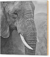 An Elephant Never Forgets Wood Print