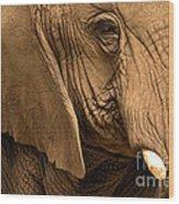 An Elephant's Eye Wood Print