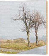 An Empty Path Wood Print