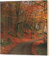 An English Autumn Wood Print