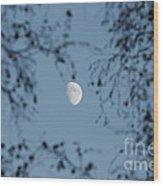 An October Moon Wood Print