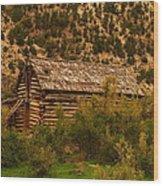 An Old Cabin In Utah Wood Print