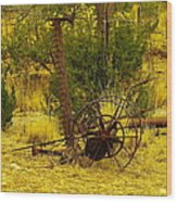 An Old Grass Cutter In Lincoln City New Mexico Wood Print by Jeff Swan