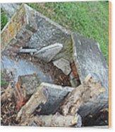 An Open Grave's Rubble Wood Print