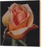 An Orange Rose Wood Print