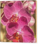 An Orchid Wood Print